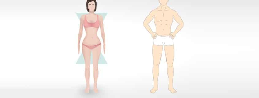 body shapes types